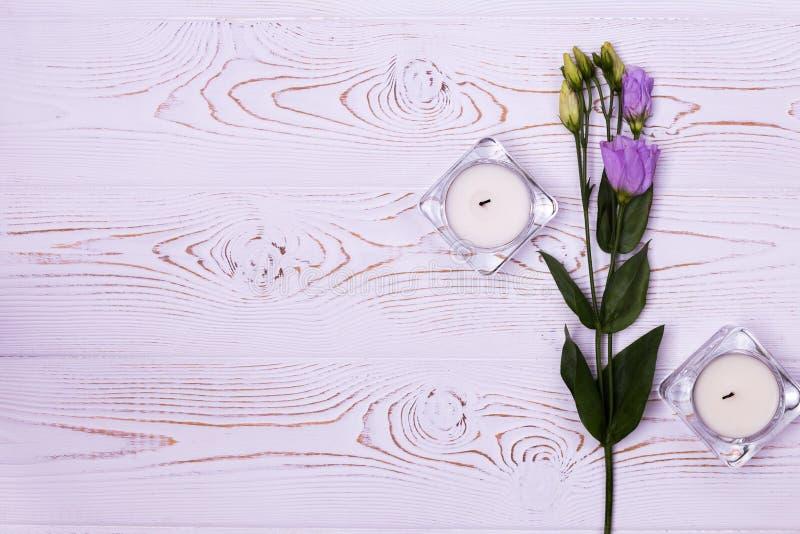 Skład kwiaty Workspace z kwiatami w szklanych świeczkach na białym tle od above Mieszkania nieatutowy tytułowanie Odbitkowa przes fotografia stock