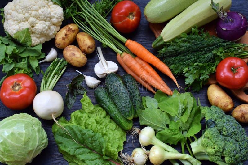 Skład na ciemnym tle organicznie jarscy produkty: zieleni obfitolistni warzywa, marchewki, zucchini, grule, cebule, garl fotografia royalty free