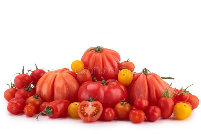 Skład pomidory obrazy royalty free