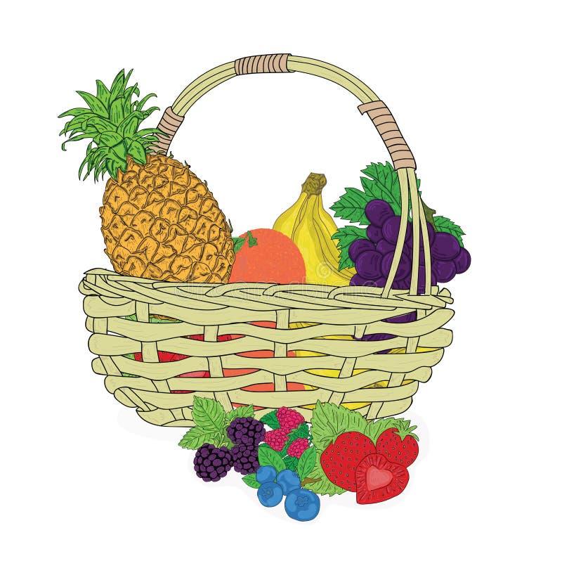 Skład z asortowanymi owoc w łozinowym koszu na bielu również zwrócić corel ilustracji wektora royalty ilustracja
