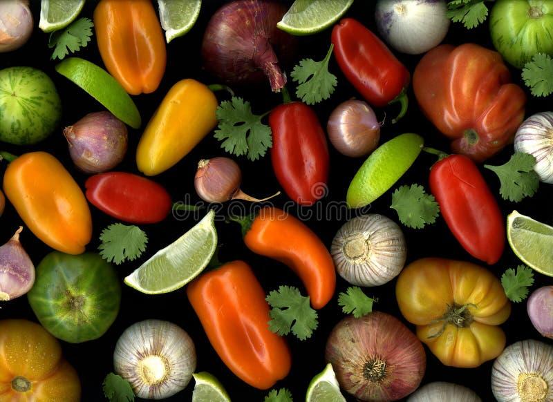składnika czarny salsa zdjęcie royalty free