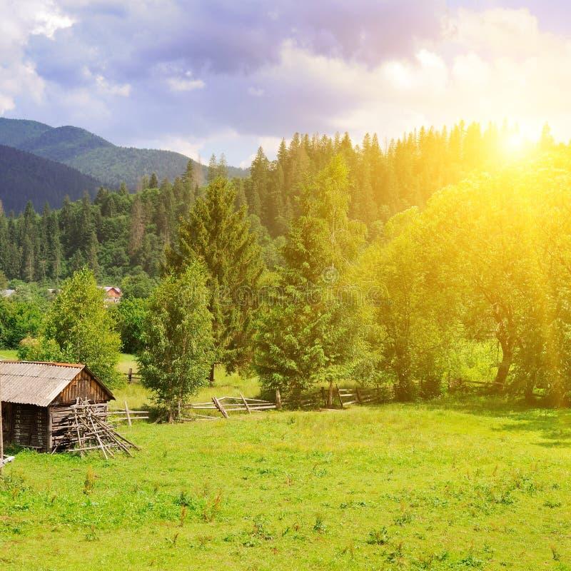 Skłony góry, iglaści drzewa i jaskrawy zmierzch, krajobrazu wiejskiego zdjęcia royalty free