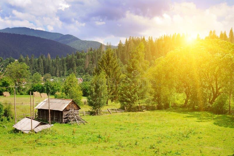 Skłony góry, iglaści drzewa i jaskrawy zmierzch, wiejski fotografia royalty free