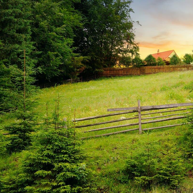 Skłony góry, piękna świerczyna i jaskrawy zmierzch, krajobrazu wiejskiego zdjęcie royalty free
