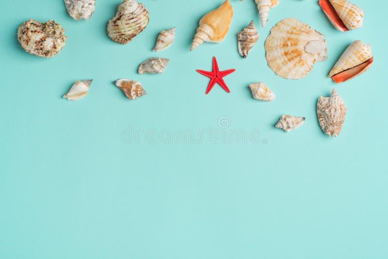 Sk?ad egzotyczny morze ?uska na b??kitnym tle poj?cia t?a ramy piasek seashells lato Mieszkanie nieatutowy Odg?rny widok fotografia stock
