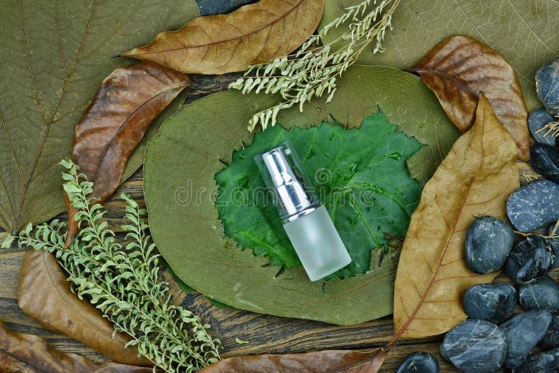 Sk?nhetsmedel vid den rena naturliga v?xten, organisk sk?nhetbrunnsortprodukt p? det gr?na bladet arkivfoto