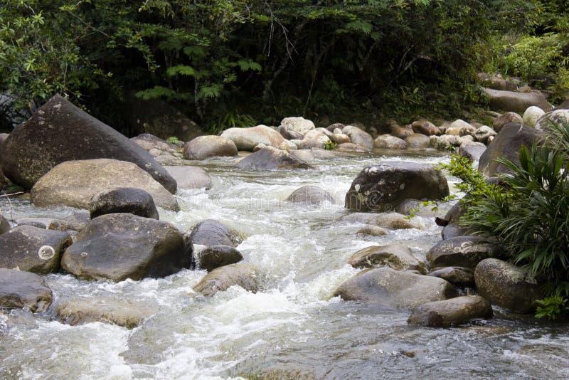 Skały w strumieniu woda obrazy royalty free