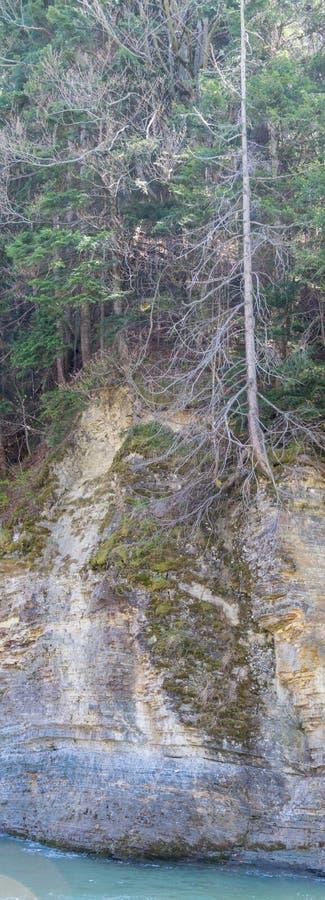 Skała halną rzeką Pionowo panorama obraz stock