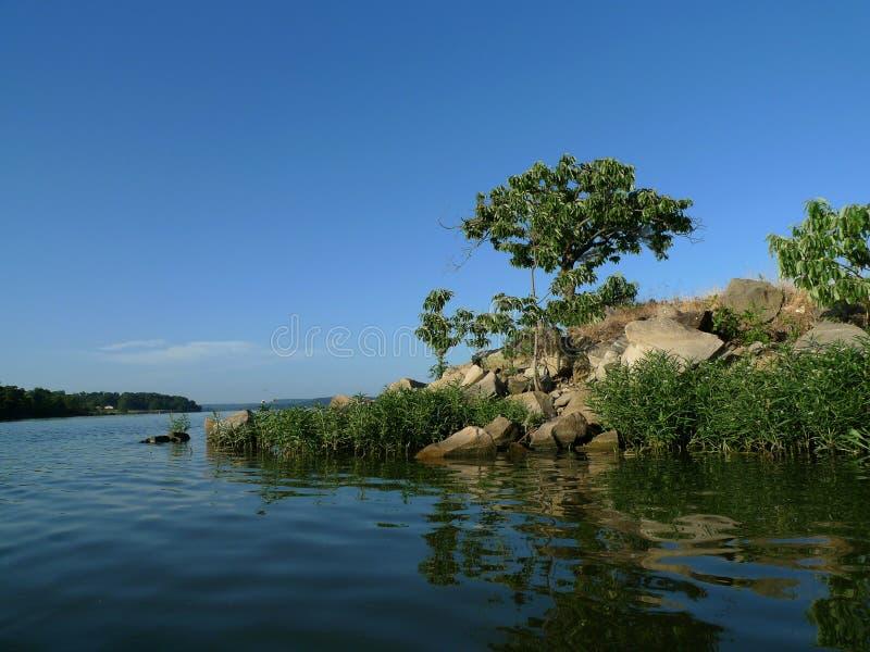 Skały i drzewa na brzeg wielki jezioro zdjęcie royalty free