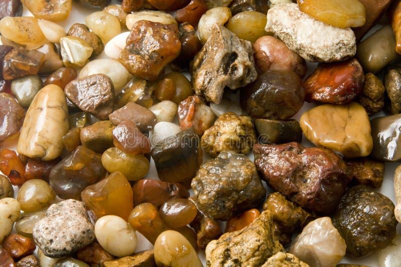 skały mokre zdjęcie royalty free