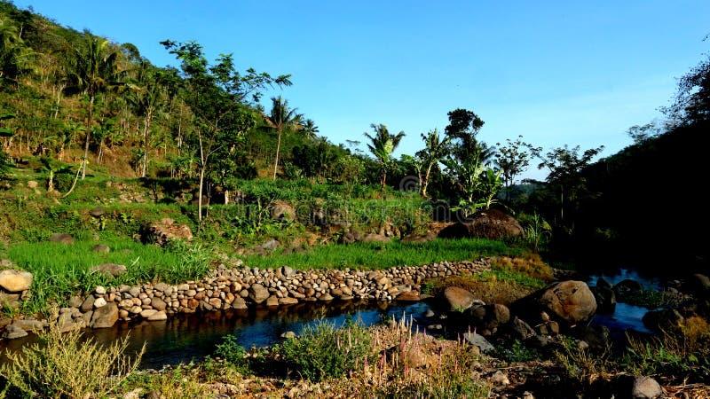 Skały na polach i rzekach, krajobraz indonezyjski zdjęcie stock