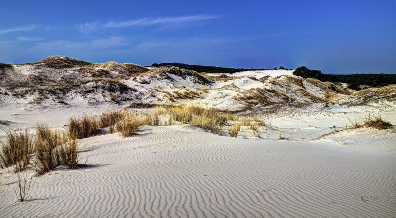 "Ska en mouvement de ""de piÅ de 'de Wydma CzoÅ de dunes photo stock"