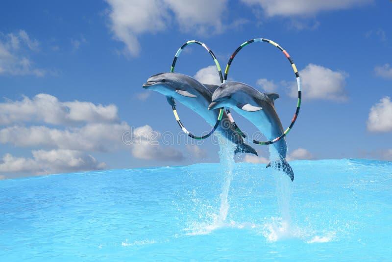 Skacze bottlenose delfiny dwa wielkiego x28 &; lat Tursiops truncatus& x29; przez obręcza nad wodą na backgro zdjęcia stock