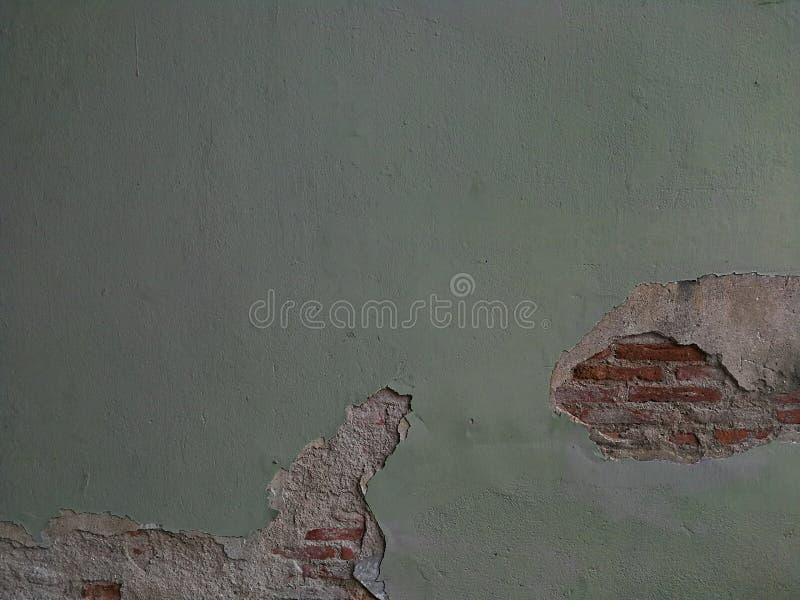 Skadad betongvägg för textur för mossagräsplan med röd tegelsten under royaltyfri bild