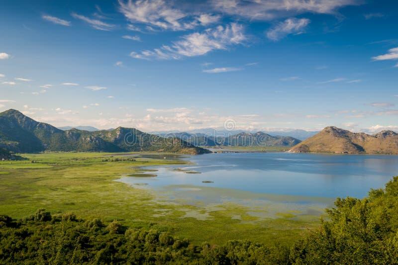 Skadar湖和山 库存图片