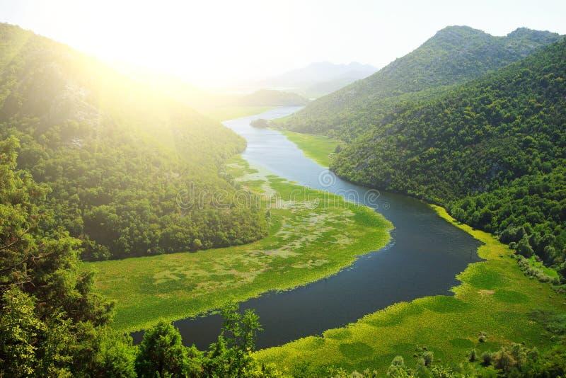 Skadar jeziora park narodowy zdjęcie royalty free