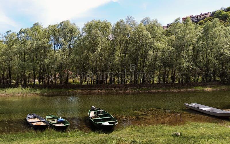 Skadar lake in Montenegro, Europe royalty free stock photos