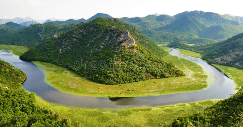 Skadar sjönationalpark - Montenegro royaltyfria bilder
