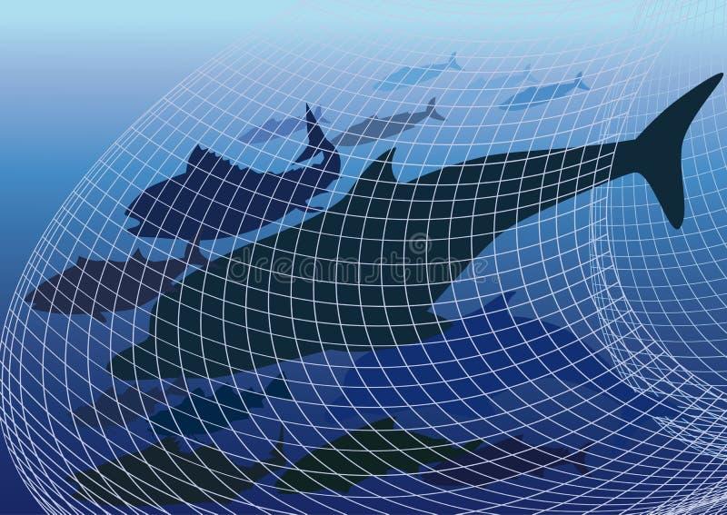 Skadligt fiskenätverk vektor illustrationer