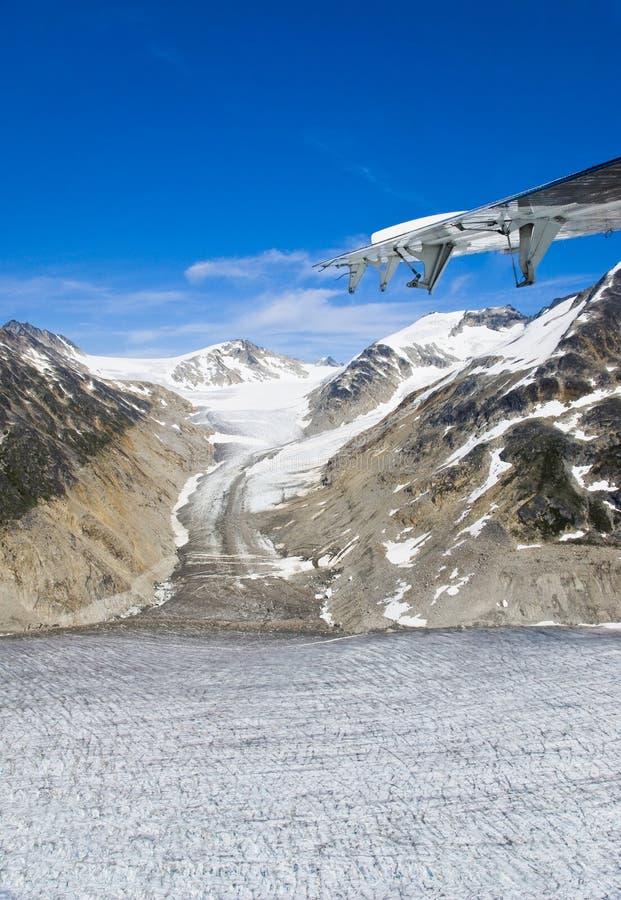 skagway阿拉斯加的冰川 库存照片