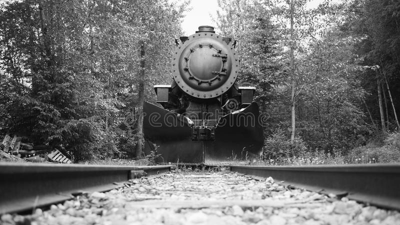 Skagway, Αλάσκα: Τραίνο στοκ εικόνες με δικαίωμα ελεύθερης χρήσης