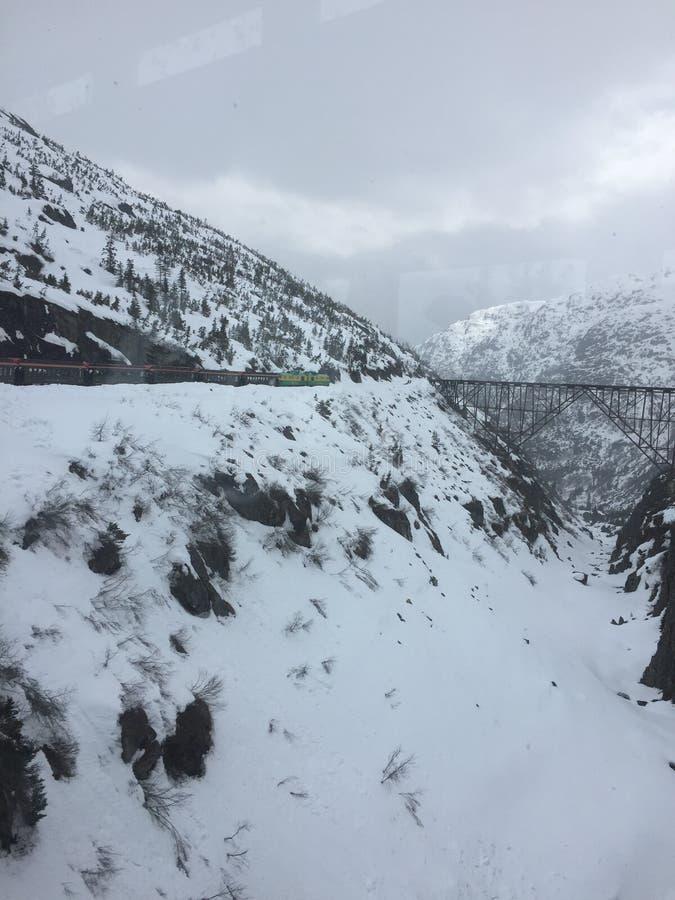 Skagway-Zug stockbild
