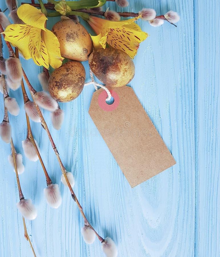 Skaka det guld- äggsymbolet, pilalstroemeria på en blå träbakgrundsetikett royaltyfri bild