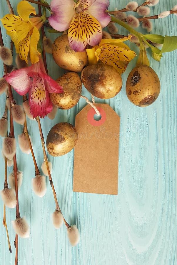 Skaka guld- ägg, pilalstroemeria på en blå träbakgrundsetikett royaltyfri fotografi