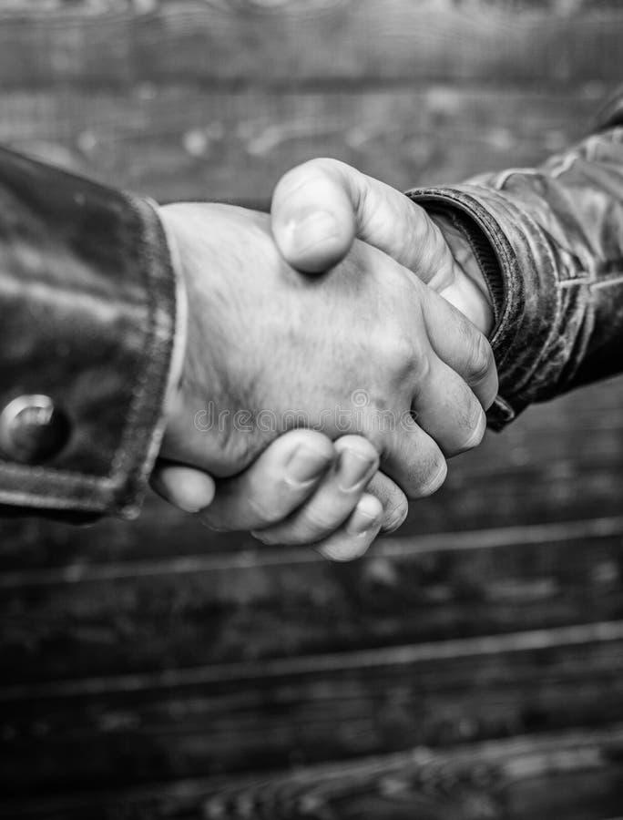 Skaka st?nger sig h?nder upp V?nlig gest f?r handskakning Handskakninggestbegrepp Partnerskap- och aff?rsavtal lyckat arkivbilder