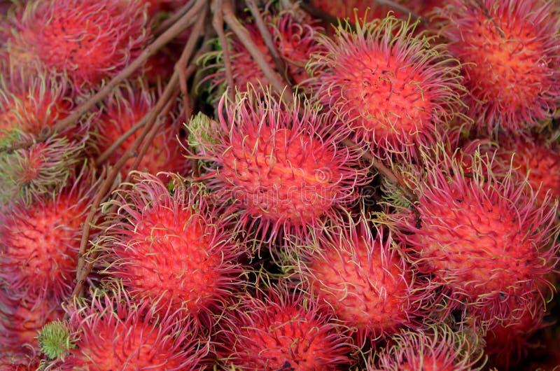 Skal för söt smak för tropiska frukter rött arkivfoton