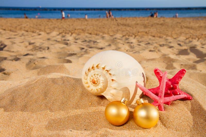 Skal och julgarneringar på stranden royaltyfri bild