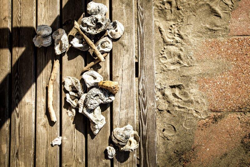 Skal wood gamla stycken på träbräden sand arkivbild