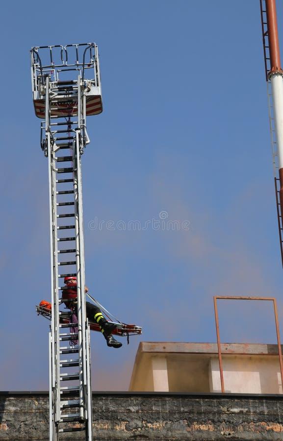 Skala av brandmän för återställningen av sårat under granen royaltyfri foto