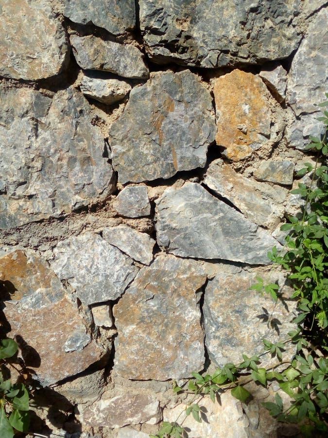 Skala, kamień, skała, konkrecja, rachunek fotografia royalty free
