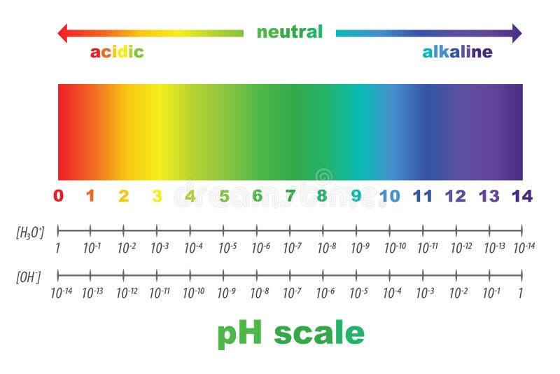 Skala ph wartość dla zjadliwych i alkalicznych rozwiązań royalty ilustracja