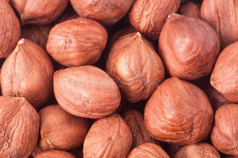 Skalade hasselnötter som en bakgrundsnärbildmakro royaltyfria foton
