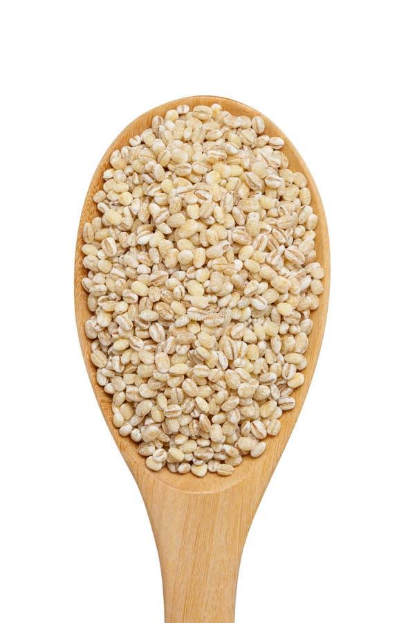 Skalat korn för pärlemorfärg korn i träskeden som isoleras på vitbaksida arkivfoto