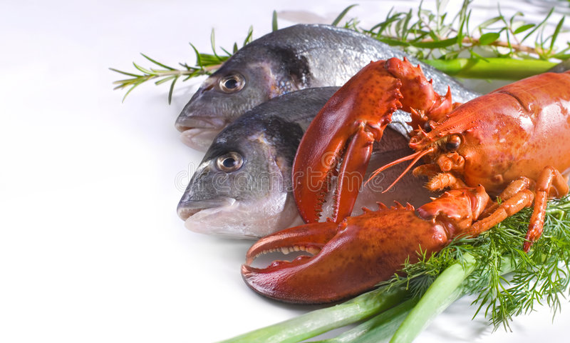 skaldjur arkivfoton