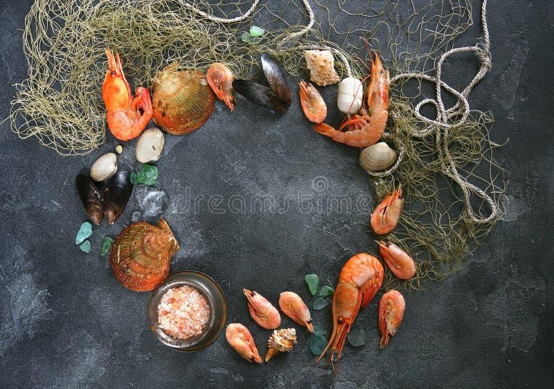 Skaldjur på en mörk bakgrund, räkor, musslor, musslor på den svarta stenen, kopieringsutrymme royaltyfri bild