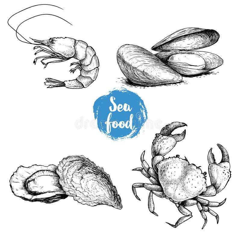 Skaldjur skissar uppsättningen Nya räka, musslor och ostron, krabba Samling för havsmarknadsprodukter också vektor för coreldrawi stock illustrationer