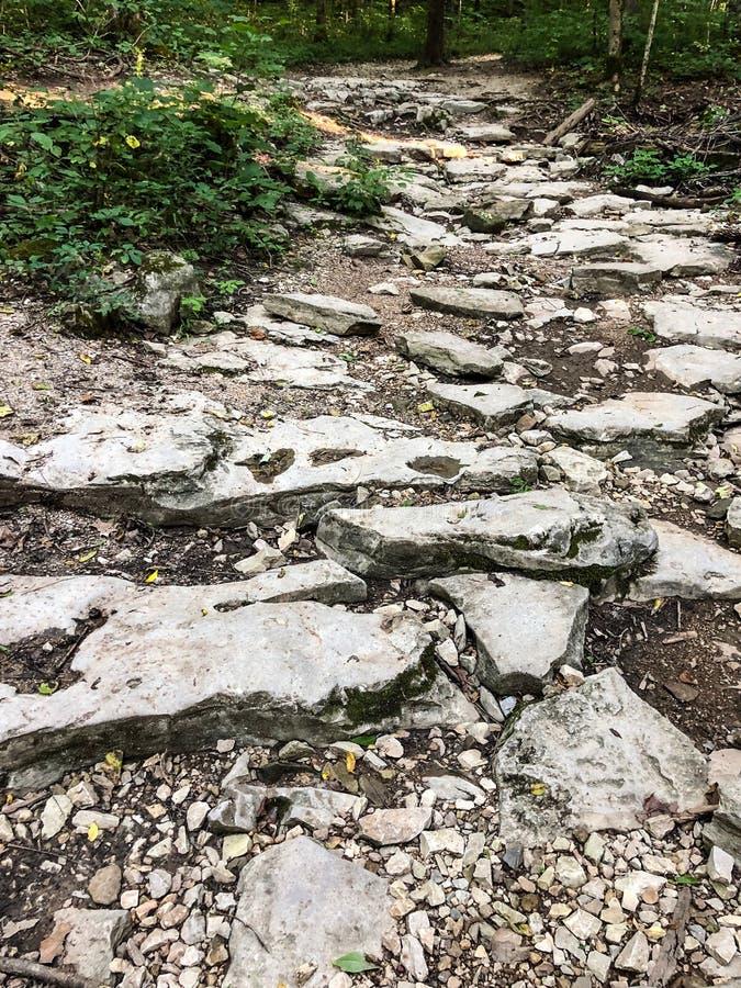 Skalista ścieżka przez lasu przy Indiana stanu parkiem obrazy royalty free