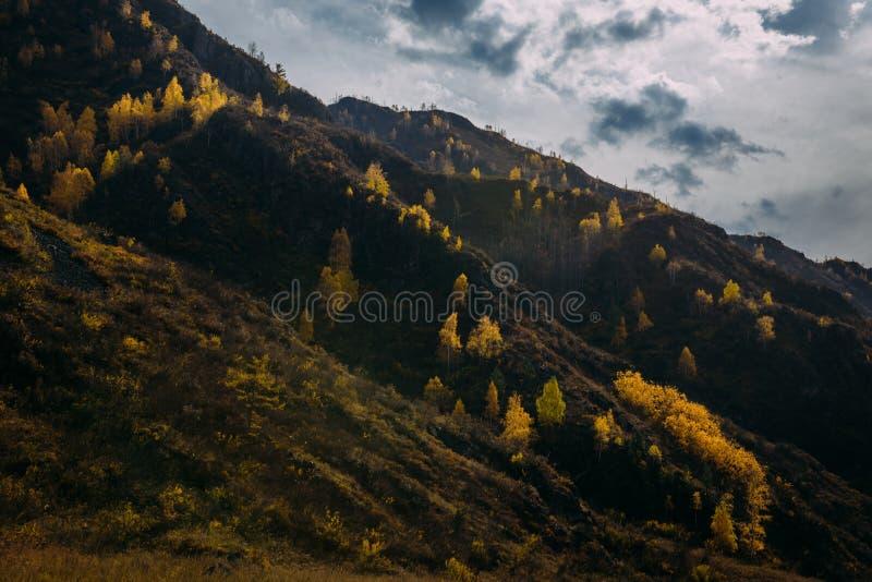 Skalista góra przerastająca z żółtymi drzewami przeciw chmurnemu jesieni niebu iluminuje promieniami położenia słońce majestatycz zdjęcia stock