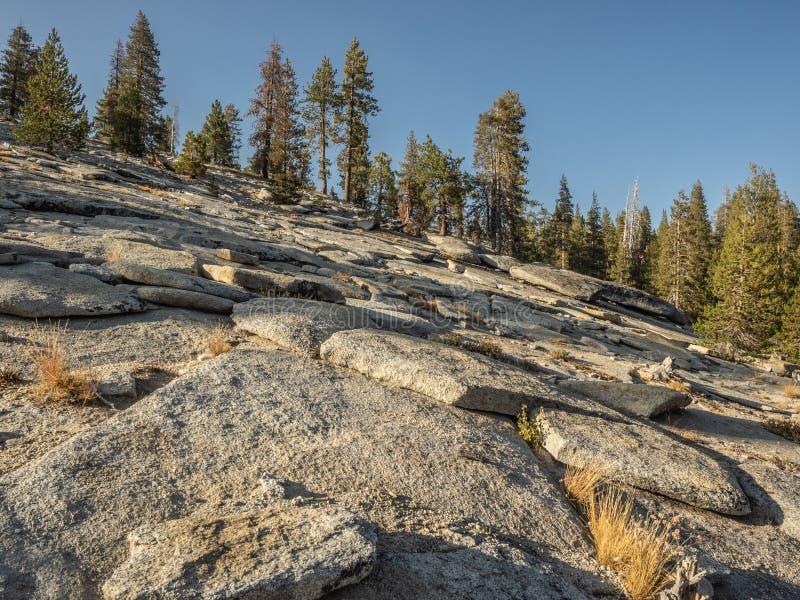 Skalista góra z drzewami obrazy stock