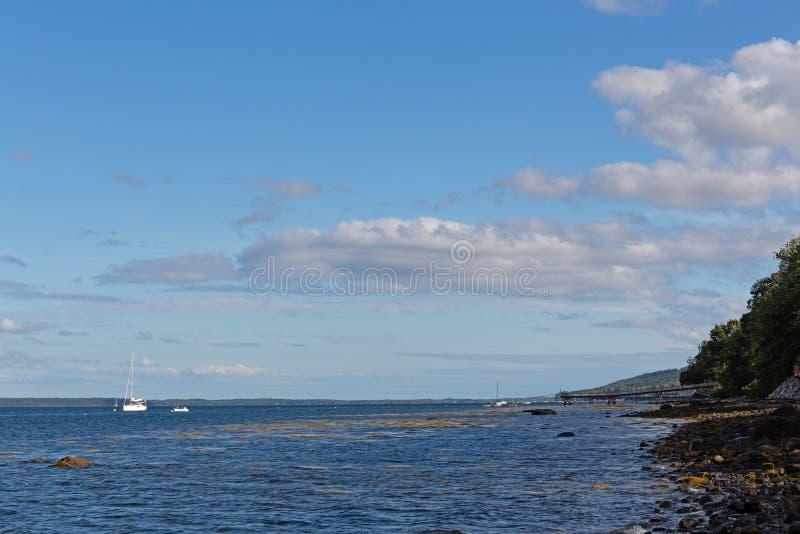 Skalista linia brzegowa Belfast, Maine na chmurnym dniu obraz stock