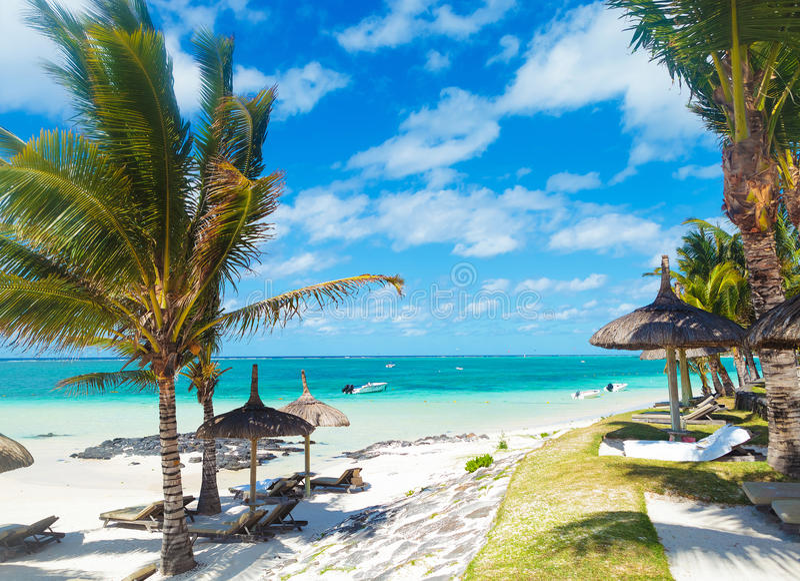 Skalista plaża Mauritius z drzewkami palmowymi i deckchairs obrazy royalty free