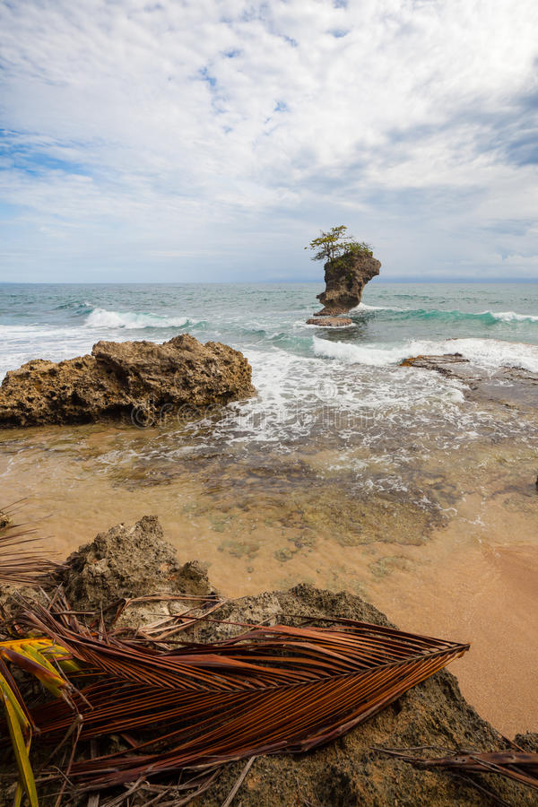 Skalista plaża w Manzanillo Costa Rica zdjęcia royalty free