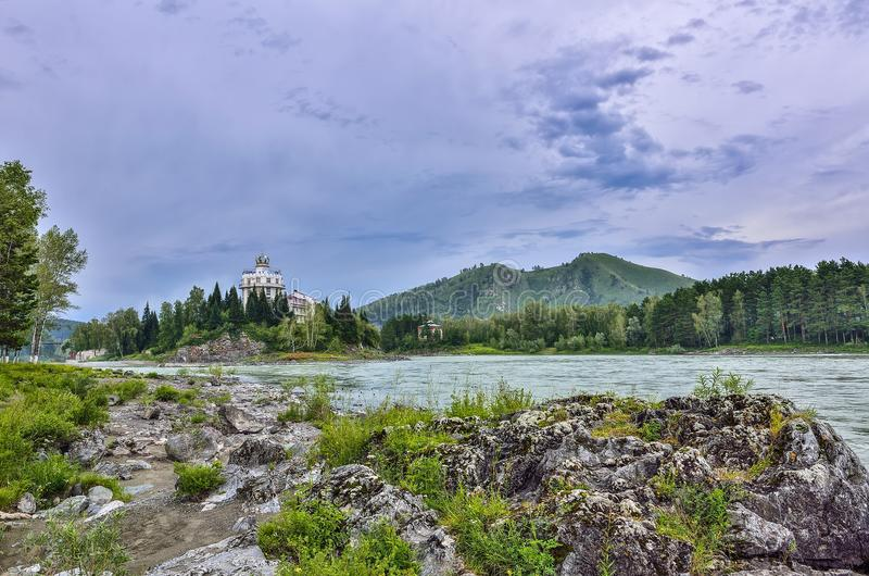 Skalista wyspa na halnym rzecznym Katun Rosja - lato ląduje obraz royalty free