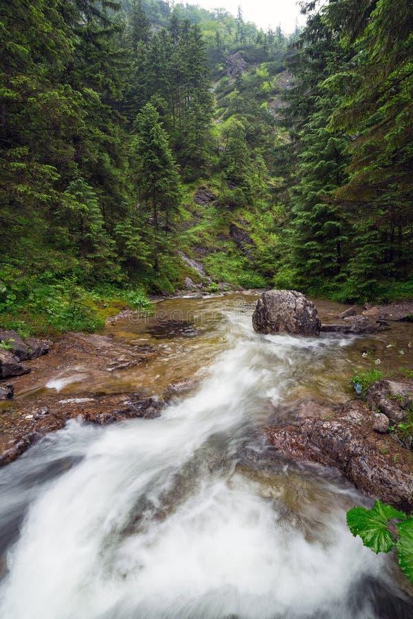 Skalista zatoczka w Tatrzańskich górach obrazy stock