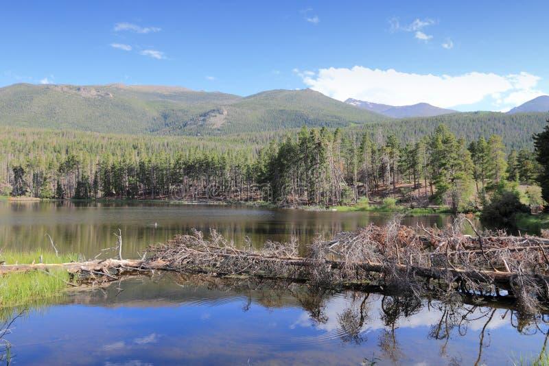 Skaliste góry - Sprague jezioro fotografia royalty free