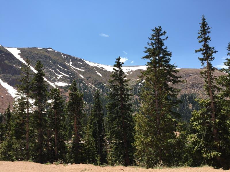 Skalistej góry park narodowy fotografia stock